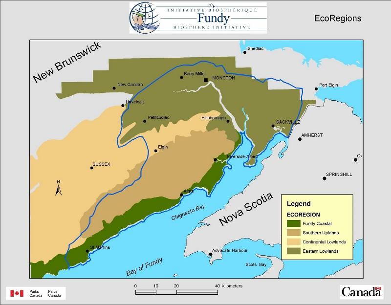 Worksheet. Bay of Fundy Biosphere Reserve  Fresh Air Adventure